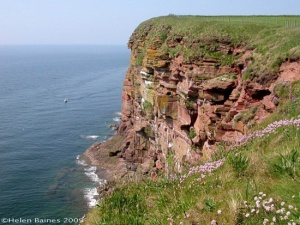 One coast... (St Bees Head)